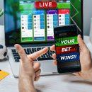 K9Win Sports Betting
